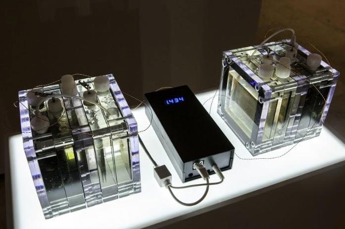 Biotricity sound art mix on-air at Kunstradio – Radiokunst, Ö1